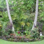 Some views of the grounds at Honu Kai