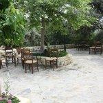Une terrasse invitant à la détente à l'ombre des oliviers...