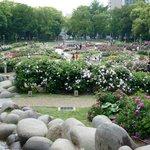 立体的な作りの公園