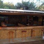 Campsite Bar