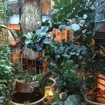 the patio