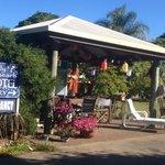 Shelly Beach Motel Foto