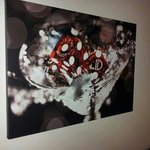 Painting on the wall...replicas available at gift ship
