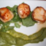 scallops with a pea puree.