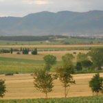 Vistas from Rosa dei Venti