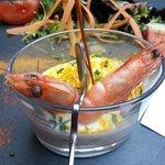 Vorspeise. Krabben + Krabbenpüré