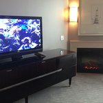 Fireplace and TV in living room