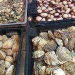 Les fruits de mer...