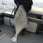 60+ pound halibut