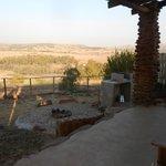 patio and braai area