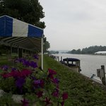 The Henley Regatta Course from Phyllis Court