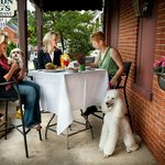 Pooch Patio - enjoy outdoor dining with your dog