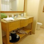 Well-designed bathroom sink counter