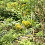 the gardens!