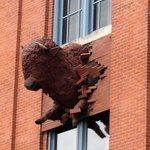 "The buffalo logao ""crashing through"" the museum front wall."