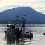 Salmon Fishing in Chatham Straight