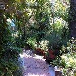 Jardín que te lleva a las habitaciones