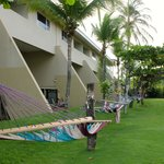 hammock area by building 1