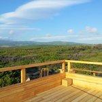beach bar - vista pineta