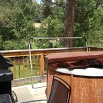 Looking onto back deck you can see the hottub and Weber gas grill, plus the river and hammock
