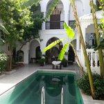 cour d'accueil avec piscine