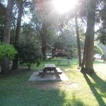 Relaxing picnic area with swing