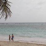 Their ocean view
