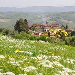 Vagliagli, in the Chianti Classico area