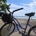 bike rented at Hotel Perico Azul
