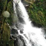 La Catarata, Rara Avis' waterfall