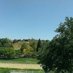 Bridelwood Winery