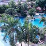 The pool I