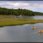 Kayaking the Centerville River near Craigville