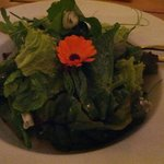 Remarkably tasty salad with leaves inc pea shoots, marigold and chive flowers