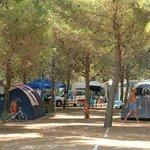 Photo of Camping Lama Le Canne