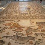 Roman mosaic from Lod Israel