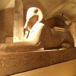 Sphinx side