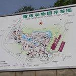 Chongquing Zoological Map