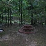 Woodsman cabin: yard