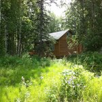 Secluded cabin suites