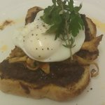 wild mushrooms with poached egg