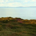 Isle of Wight from Hengistbury Head