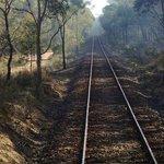 Maldon-Castlemaine rail line