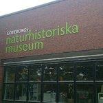 Naturhistoriska muséet