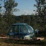 Olivi e Dintorni -  Idromassaggio