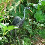 Heron by Abbey Evans