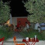 jardin de nuit - garden by night - jardin por la noche