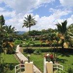 Tropical garden no where to be seen in Burundi