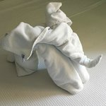 Elephant made from towels by the cleaners