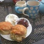 savoury cream tea